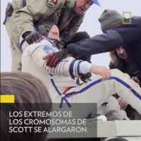 Imagen de Nat Geo - Un año en el espacio