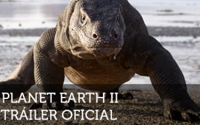 Planet Earth II trailer